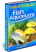 Tropical Freshwater Fish Aquariums